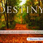 Destiny: Speak only when it improves on your silence 1