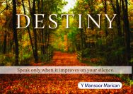 Destiny: Speak only when it improves on your silence